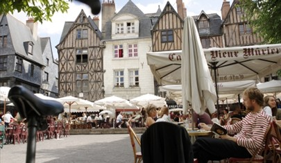 French immersion course France