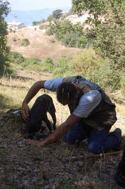 Cooking-Umbria-Truffle hunting with dog