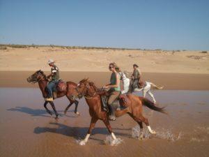 Morocco Surf - horse riding