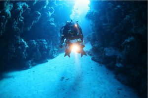 Egypt- Sport- Reef 2000-Canyon diver