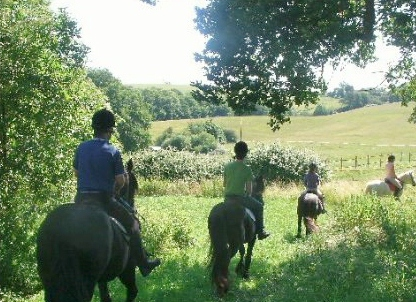 Horse Riding And Wine Tasting Holiday, Bor