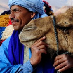 Moroccan man with camel