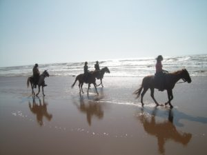 Horse_riding_holiday_Morocco_beach__