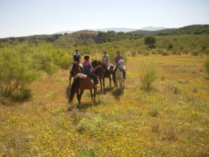 Horseriding_Spanish_cooking_horses_outdoors