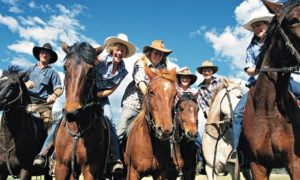 Cowboy skills in Bingara, New South Wales