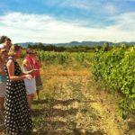 Wine_weekend_Provence_lesson_vineyard