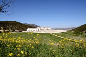 Art break Andalucia