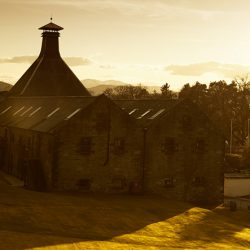 The Whisky Making Adventure
