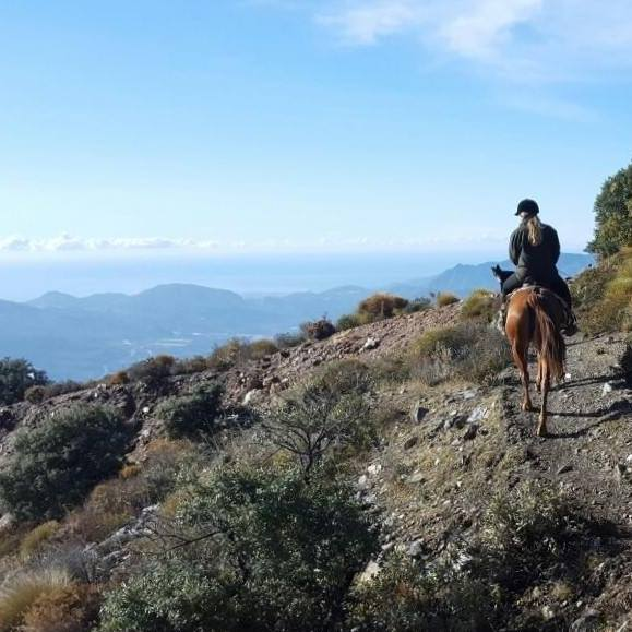 Sarah on a horse riding trek in Andalucia Spain