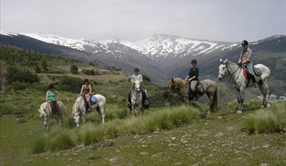 horse riding group on misty morning in Andalucian mountains