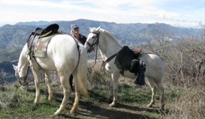 Woman on holiday with two white horses in Andalucian hills