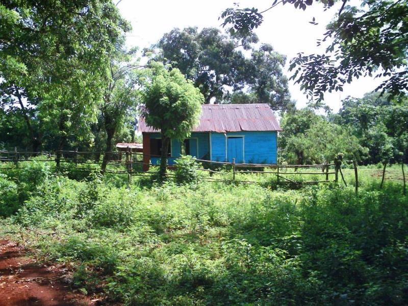 blue house in jungle of Dominican Republic