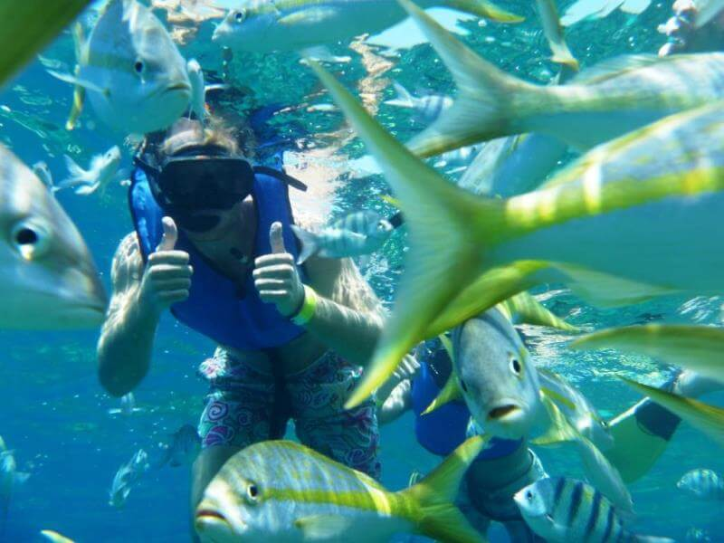 language student snorkelling in the Dominican Republic with school of fish