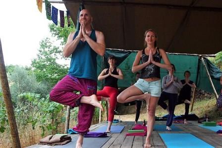 four yogis tree posing on eco yoga retreat