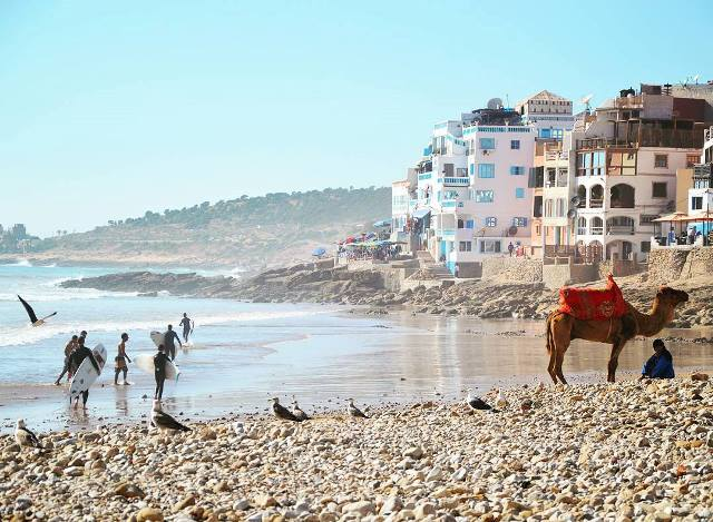 camel and surfers on beach in Taghazout, Morocco