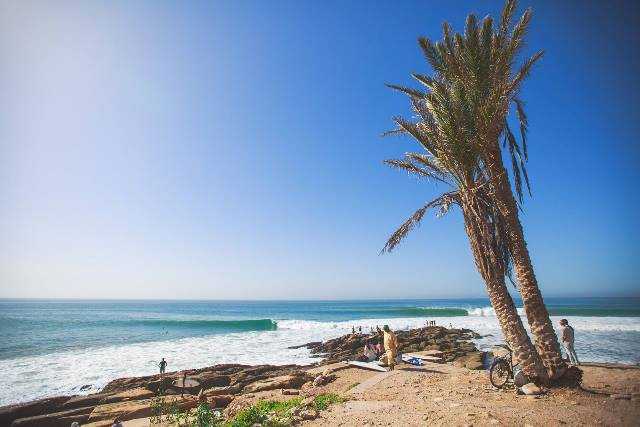 person under palm tree watching surfers