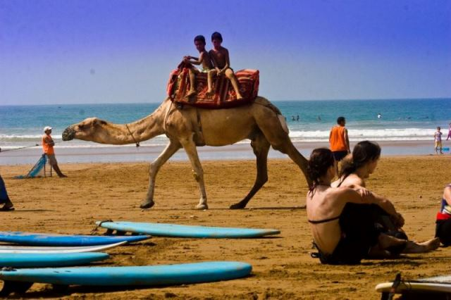 Kids riding camel on beach past surfers