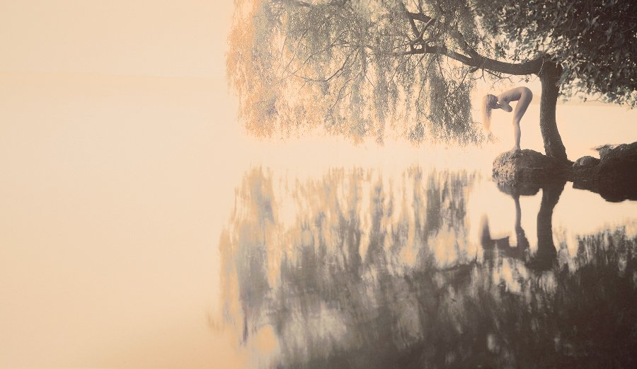 weeping willow with woman beding over and looking at lake
