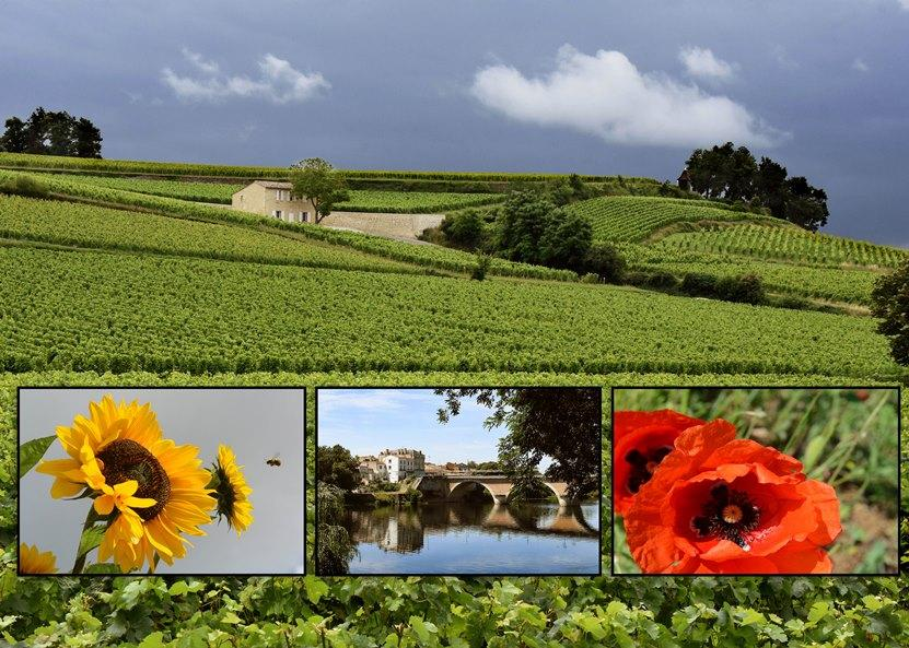 photo collage of French countryside and flowers scenery