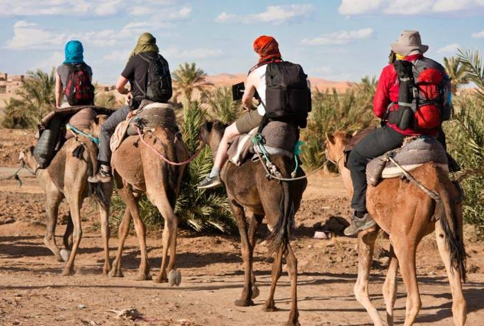 photographers riding camels through desert in Morocco