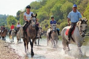 Horse riding in river in Portugal