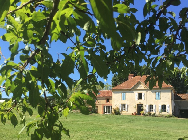 French farmhouse with blue shutters amongst the trees