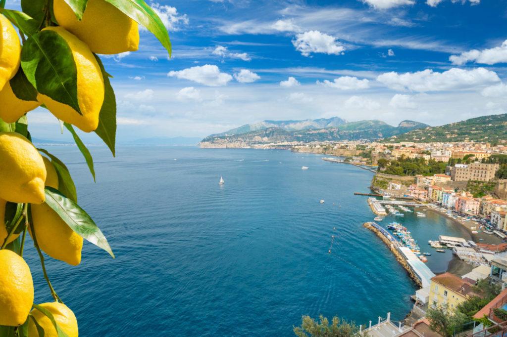 view of bay and lemons