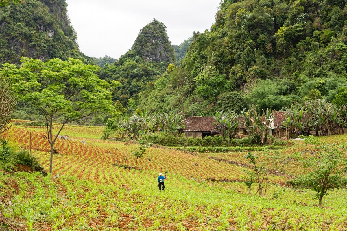 immersive northern vietnam tour