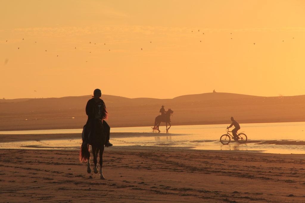 sunset horseriding on beach in Essaouira