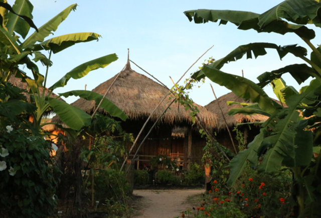 elephant sanctuary accommodation in cambodia