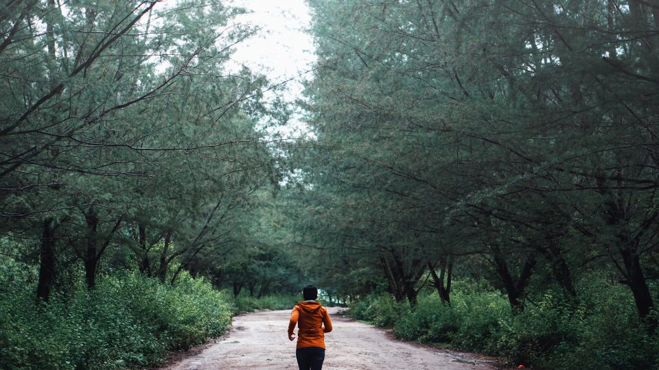 person running along tree lined path