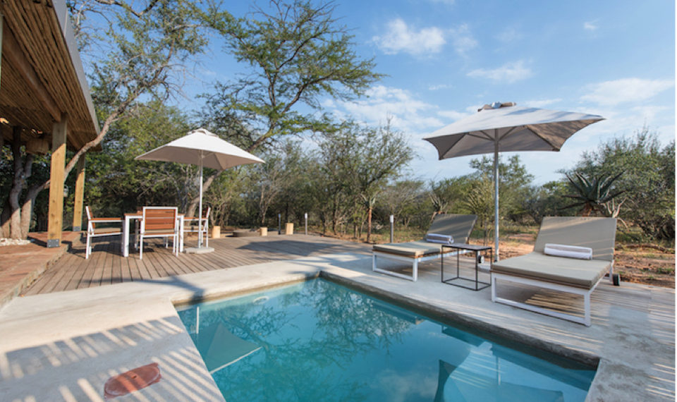 swimming pool and deck chairs in south africa lodge