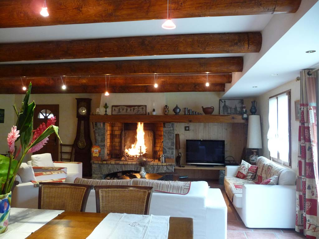 log fire in living space in a bed and breakfast