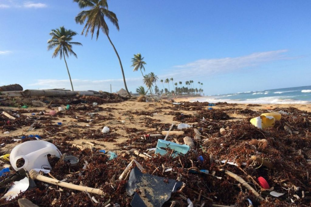 plastic pollution on a beach with palm trees
