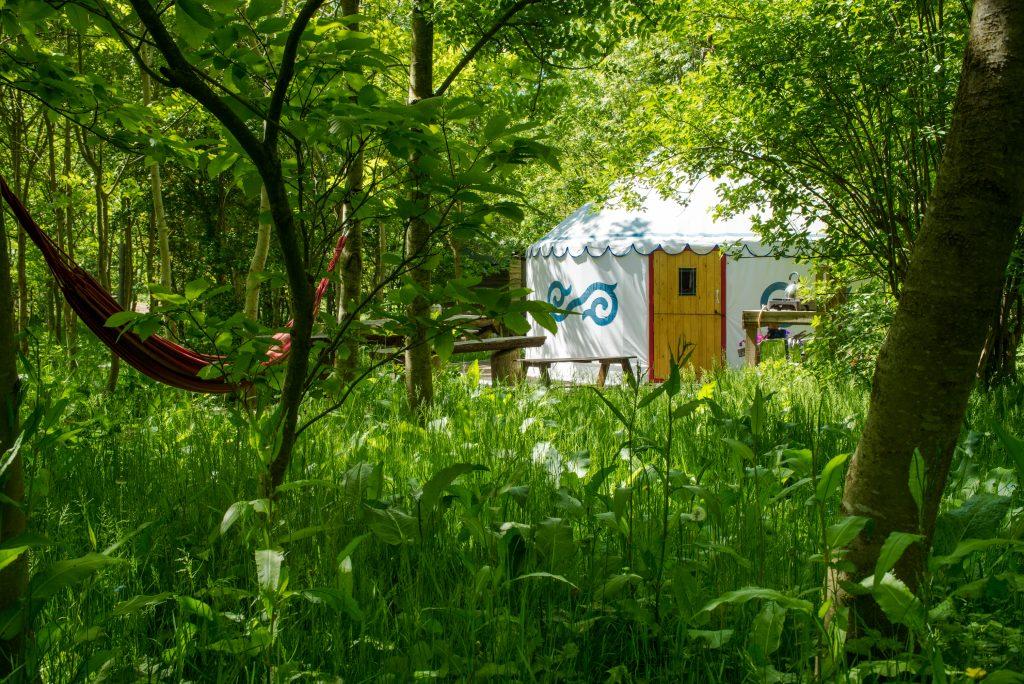woodland yurt in sussex