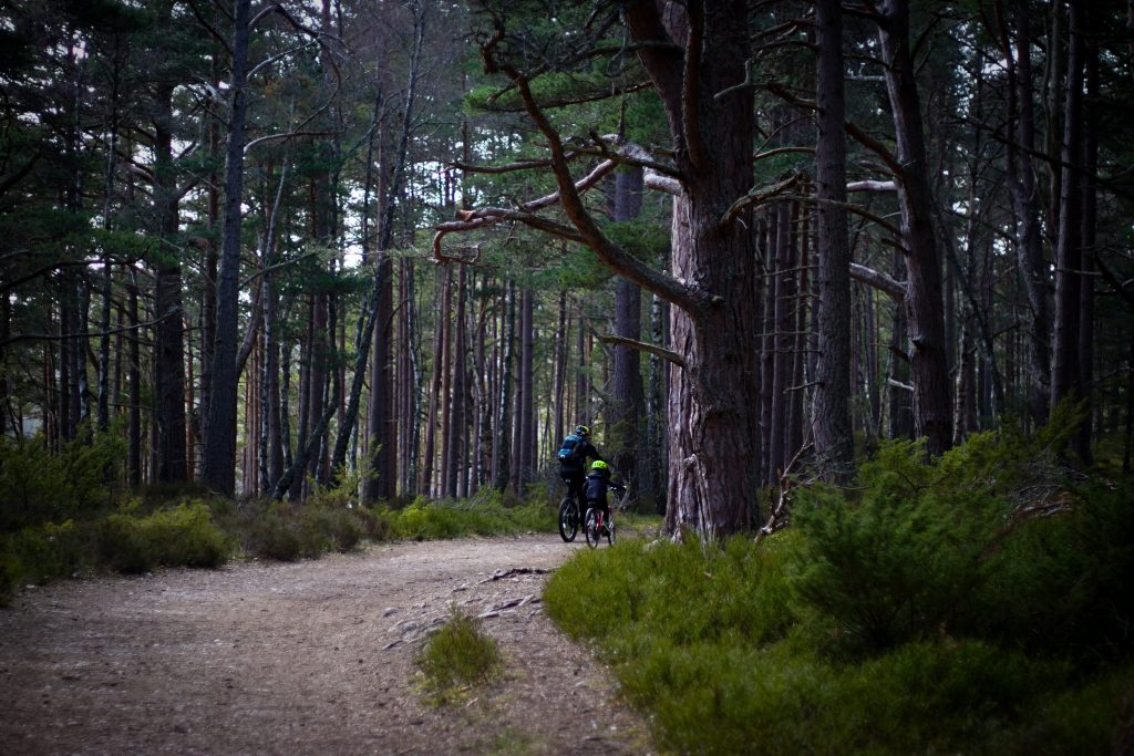 people cycling in the woods in scotland
